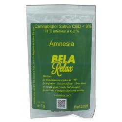 Amnesia la Fleur hollandaise en vente en ligne